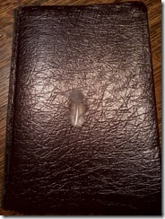 Feather on bible